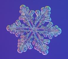 SNOWFLAKE_libbrecht_d0123a086B